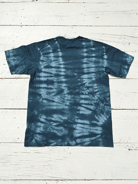 Citizen Digs T (Kago Dye)